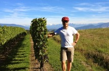 wineyard-Markus