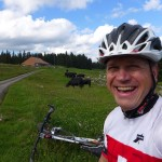 Happy cows & cyclist